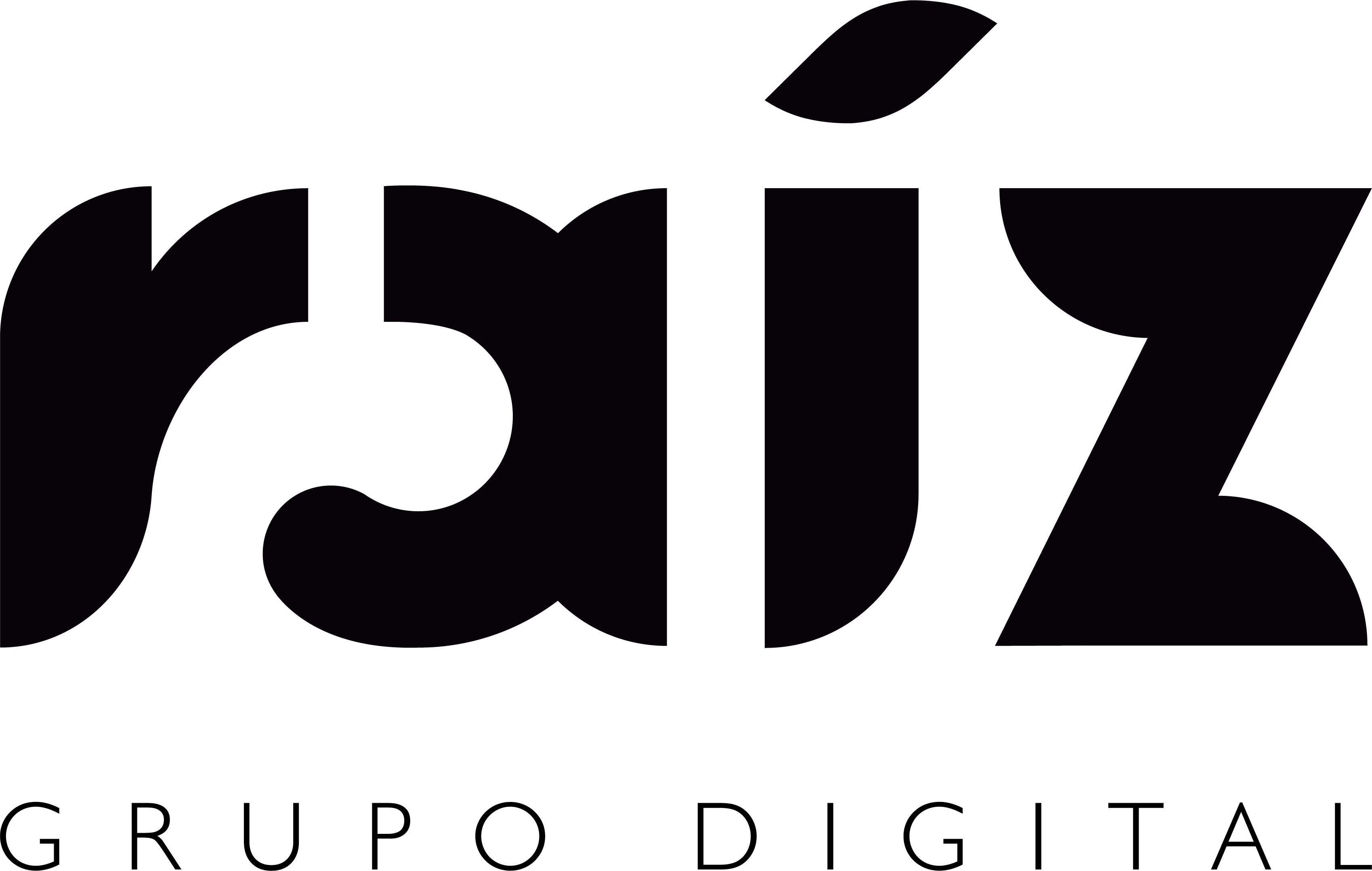Logotipo Grupo Raíz Digital